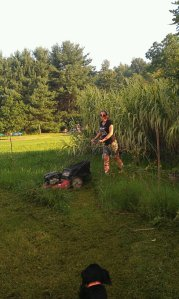 Obviously Mowing